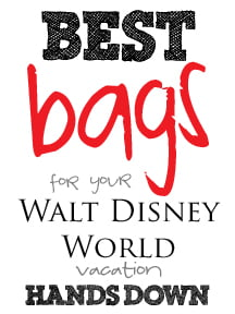 bestbagsfordisney