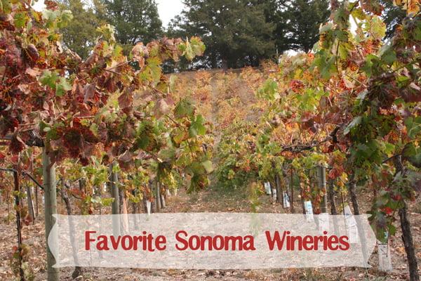 Winery-Itinerary-6